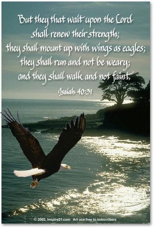 wings_eagles_isaiah_2