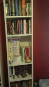 Bookcases for her shoes and books!!!