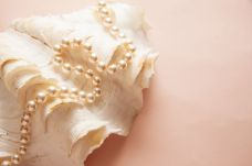 bright background with marine pearl shell, healthy teeth concept